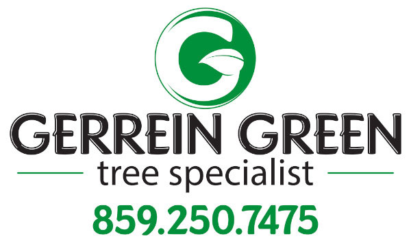 Gerrein Green Tree Specialist